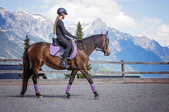 S'équiper d'une bonne selle pour l''équitation